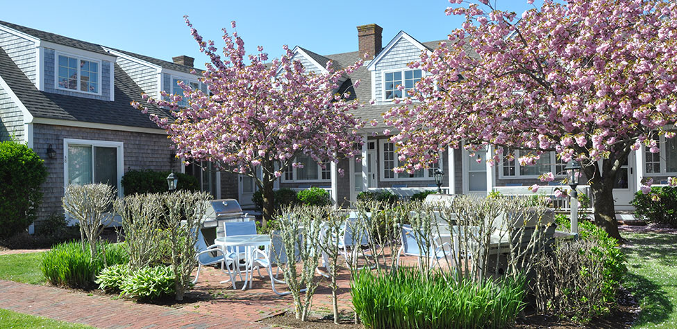 Brant Point Courtyard in Spring